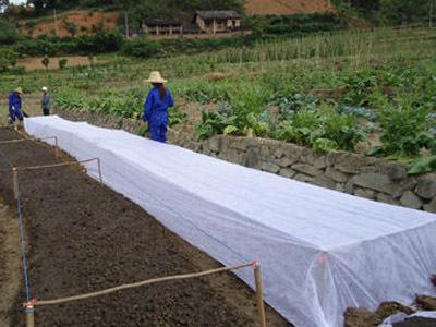 农业无纺布